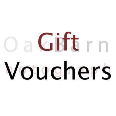 Photography photo gift voucher taunton somerset